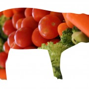 PiG_Vegetables