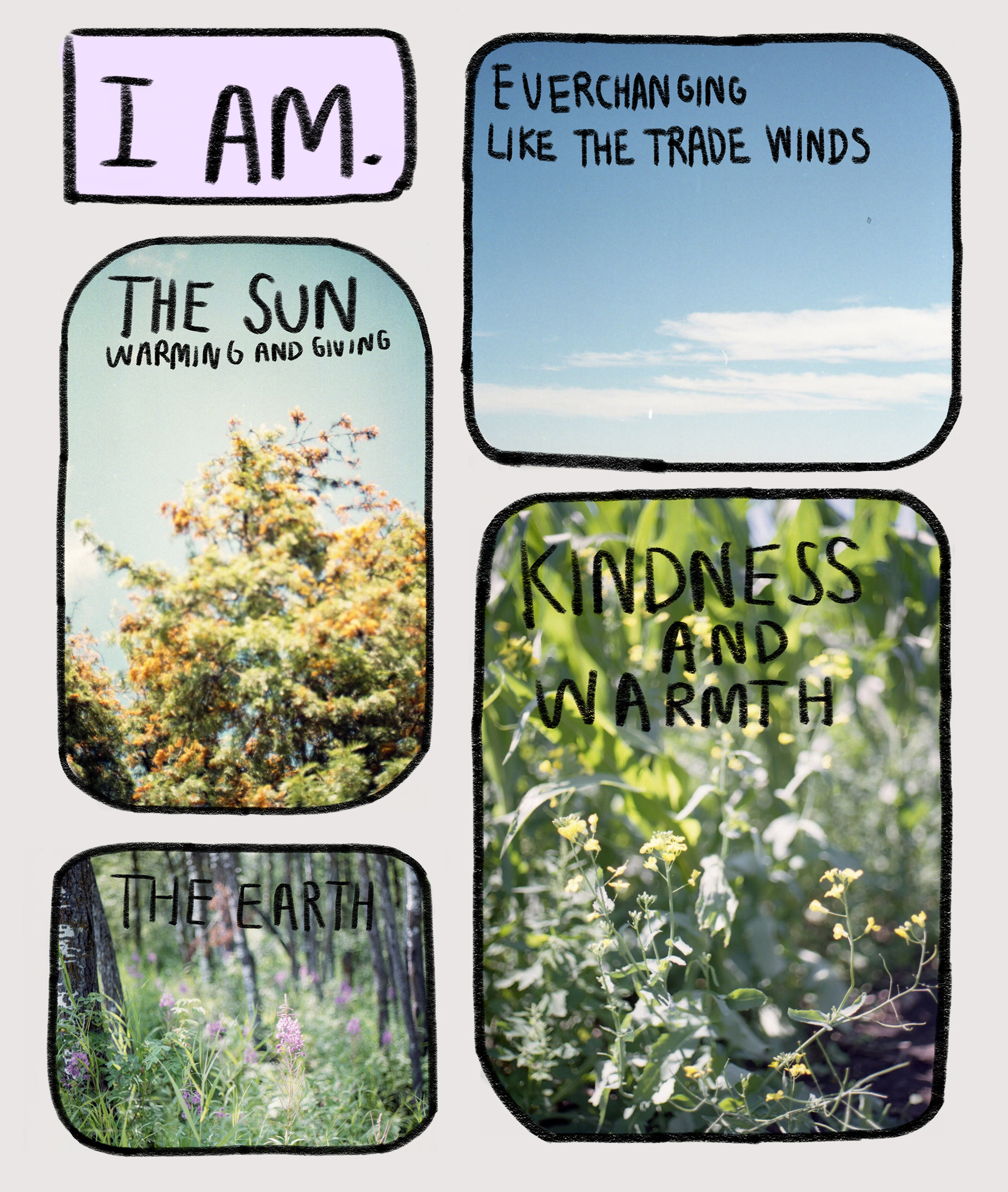 illustration of 4 different nature scenes with writing over them